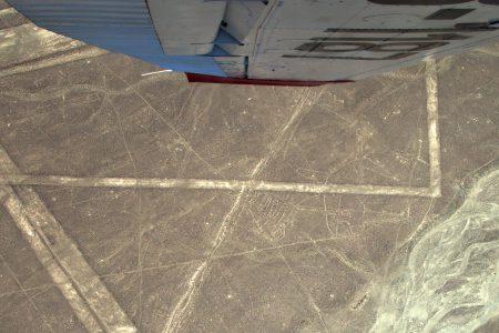 Nazca-Linien, Wal